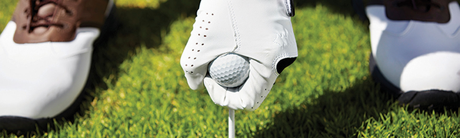 Market Category Page - Golf