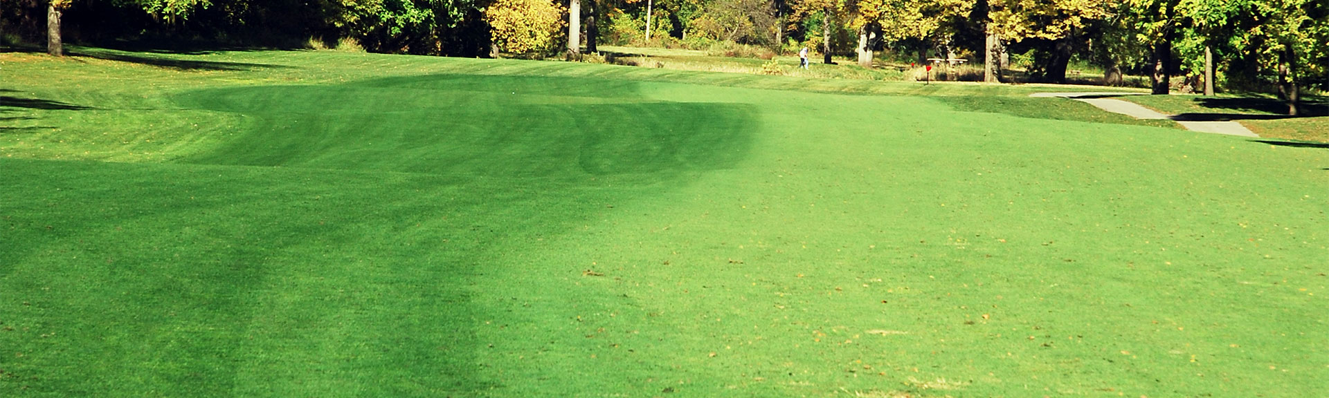 GREEN LAWNGER® TURF COLORANT